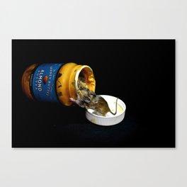 Almond Mouse Canvas Print