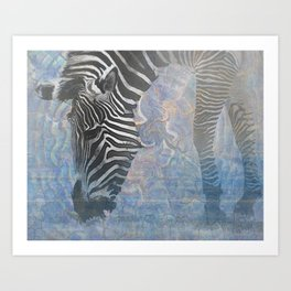 Zebra in the Mist Art Print