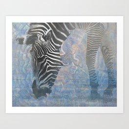 Zebra in the Mist Art Print