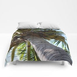 Coconut Palm Comforters