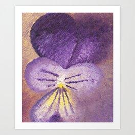 Oil painting of Viola Tricolor - Heartsease Art Print