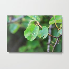 Beautiful Imperfections Metal Print