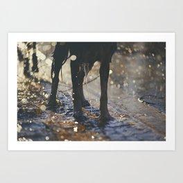 the joys of a wet dog Art Print