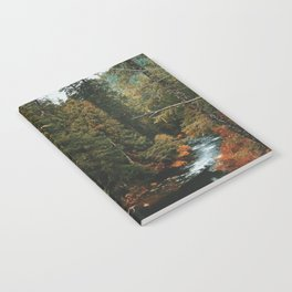 McKenzie River Trail - Blue Pool Notebook