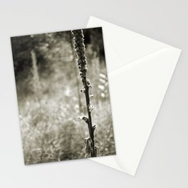 Autumn Sepia Stationery Cards