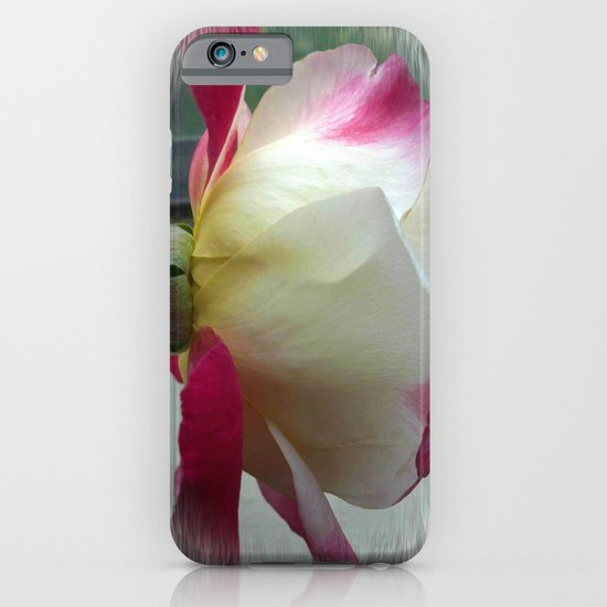 White Rose iPhone & iPod Case