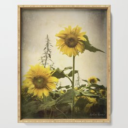 Two Sunflowers in Grunge Serving Tray