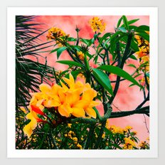Plumeria in Storm Art Print