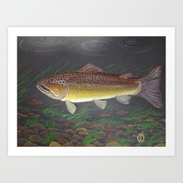 Brown trout in the stream  Art Print