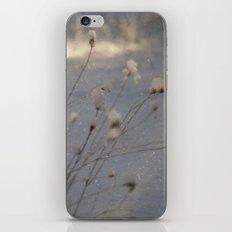 winter dust iPhone & iPod Skin