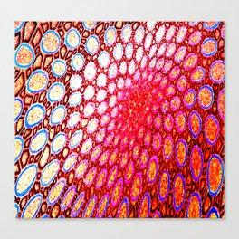 Electromagnetic Warp Canvas Print