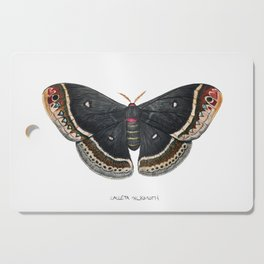 Calleta Silkmoth  (Eupackardia calleta) Cutting Board