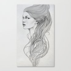 131 Canvas Print