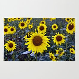 Sunflower Poetry Rug