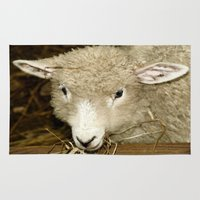 lamb Area & Throw Rugs featuring Lamb by Raymond Earley