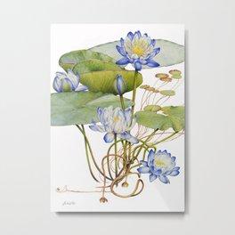 Blue Water Lily Botanical Metal Print