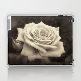 Pink Roses in Anzures 4 Antiqued Laptop & iPad Skin