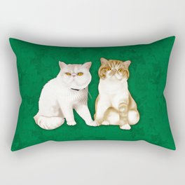 Teagues and Oliver Rectangular Pillow