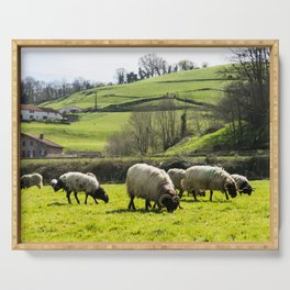 Sheep in the field Serving Tray