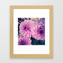 - Purple -  Framed Art Print
