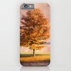 A sunny autumn day iPhone 6s Slim Case