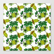 Jamaican Botanicals - Cerasee (green) Canvas Print