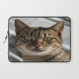 Beautiful Eyed Tabby Cat  Laptop Sleeve