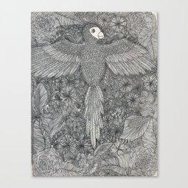 Arara Canvas Print