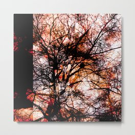 Impressions, tree II Metal Print