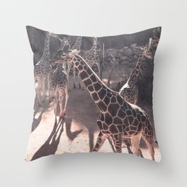 Giraffe Strut // Spotted Long Neck Graceful Creatures in Wildlife Preserve Throw Pillow