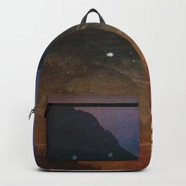Midnight Swan Backpack