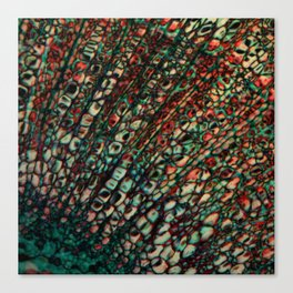 Microscope Canvas Print