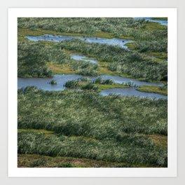 Green beautiful land Art Print