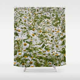 White and Yellow Daisies Shower Curtain