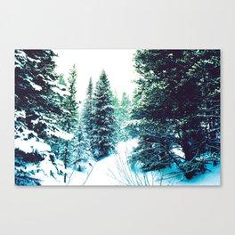 Lost Again Canvas Print
