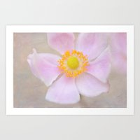 Profusion Of Pink Art Print