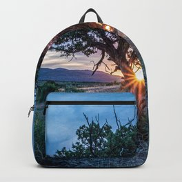 Sun Tree Hammock // Grainy Night Sunset Rays Hiking Landscape Photograph Wilderness Beauty Backpack