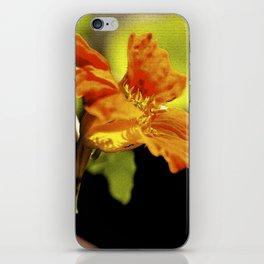 """Doppelgänger (ii)"" by ICA PAVON iPhone Skin"