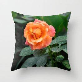 glow - vertical Throw Pillow