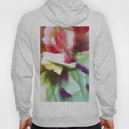 Colored lights Hoody
