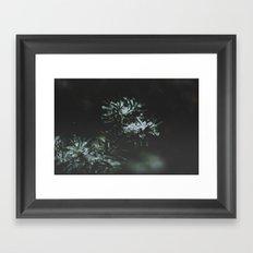Forever Evergreen Framed Art Print