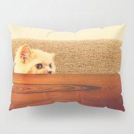 Soft and Warm Pillow Sham