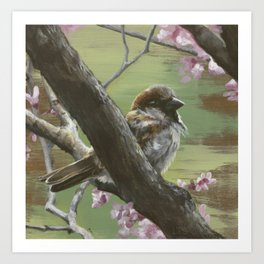 Sparrows of Spring 1 Art Print