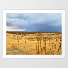 Horsetooth Hills Art Print