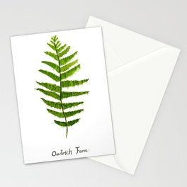 Ostrich fern Stationery Cards