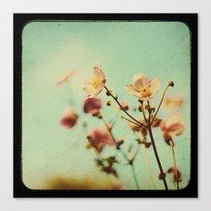 ttv Japanese Anemones  Canvas Print
