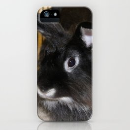 Twin Rabbits iPhone Case