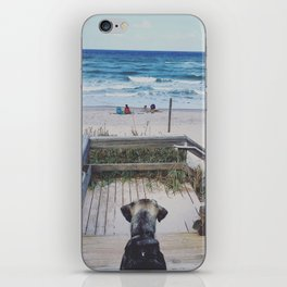 A Dogs Life iPhone Skin