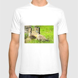 Canadian Geese and Babies T-shirt