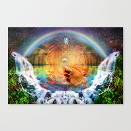 Sacred Mushroom - Hana Rainforest Maui, Hawaii Canvas Print
